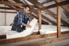 Brdfrd Polymax roof DIY insulation