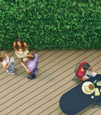 HardieDeck – Courtyard-Paperbark-landscape ext-C