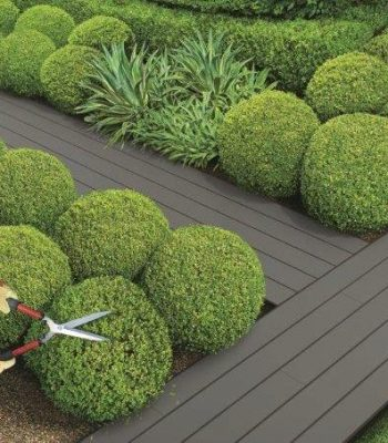 HardieDeck Garden Path Windspray