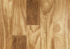 Blackbutt timber swatch