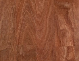 Sydney Bluegum timber swatch